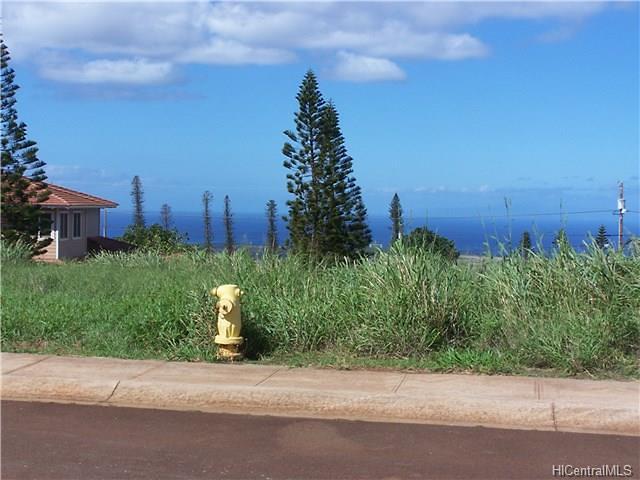 Photo of lot 50 Halena St, Maunaloa, HI 96770